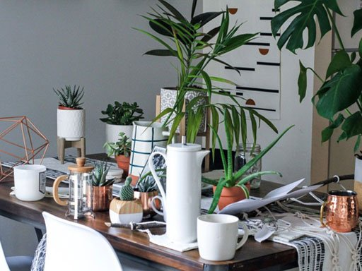 A tabletop covered in vases and potted plants