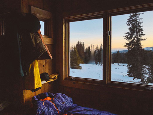 A view from inside a cottage with pine trees and snow outside